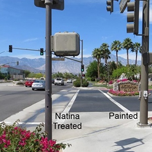 Rancho Mirage Landscaping Project by Natina