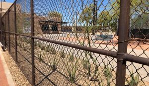 Chain Link Fence Stain Solutions